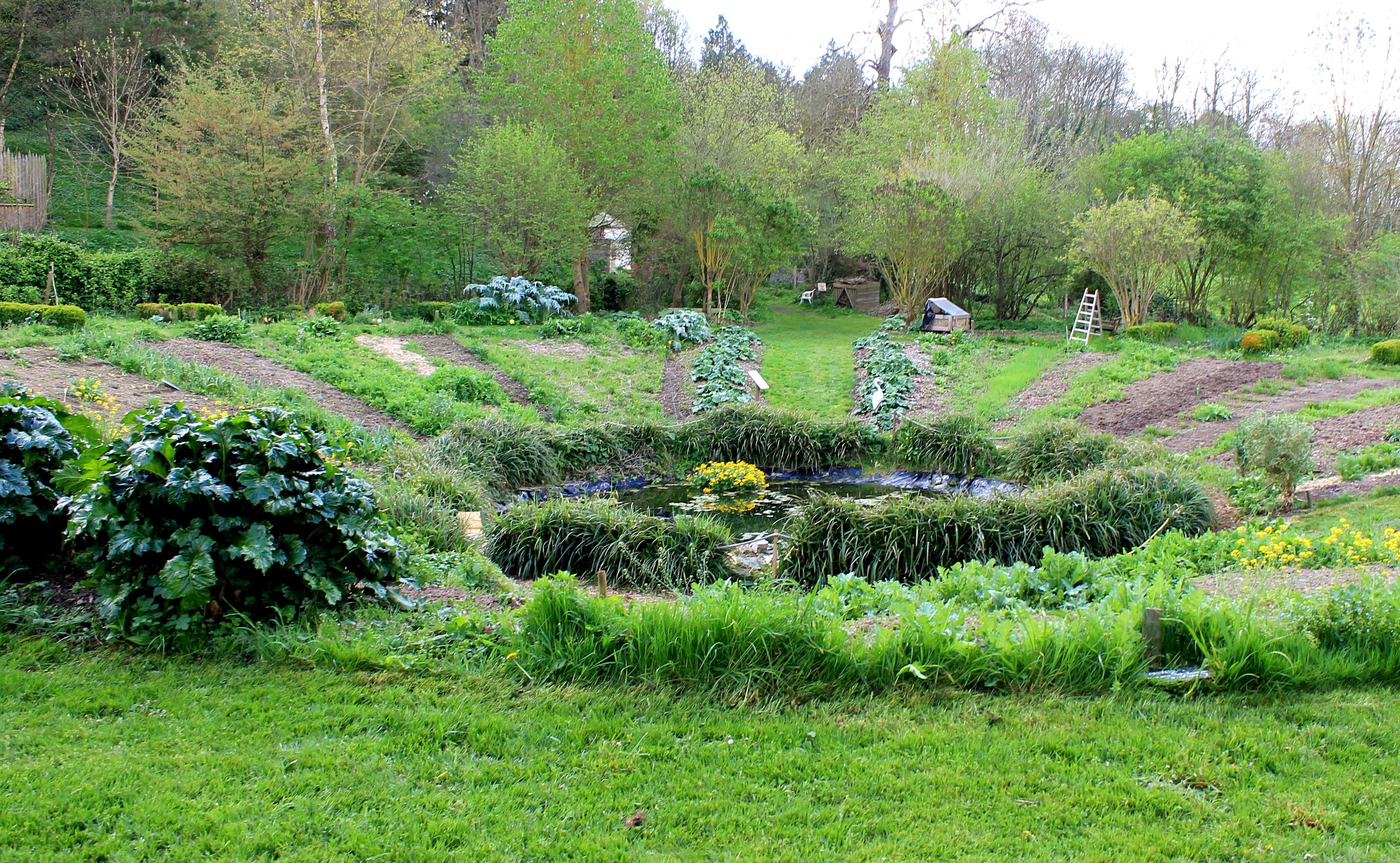 File amblie jardin nature des marettes for Jardin potager
