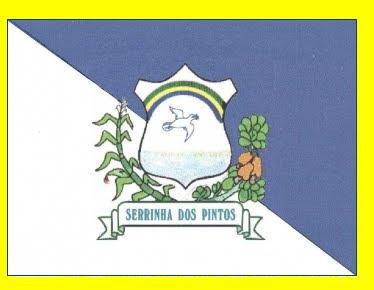 Bandeira de Serrinha dos Pintos