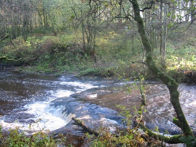 Calder Water in Calderglen Country Park - geograph.org.uk - 1001798
