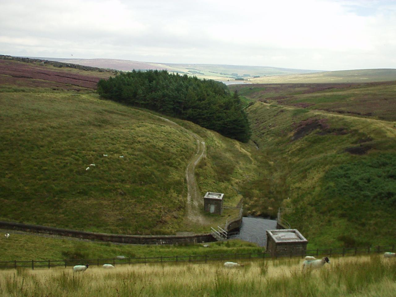 Clough below Gorple Upper Reservoir dam - geograph.org.uk - 99747