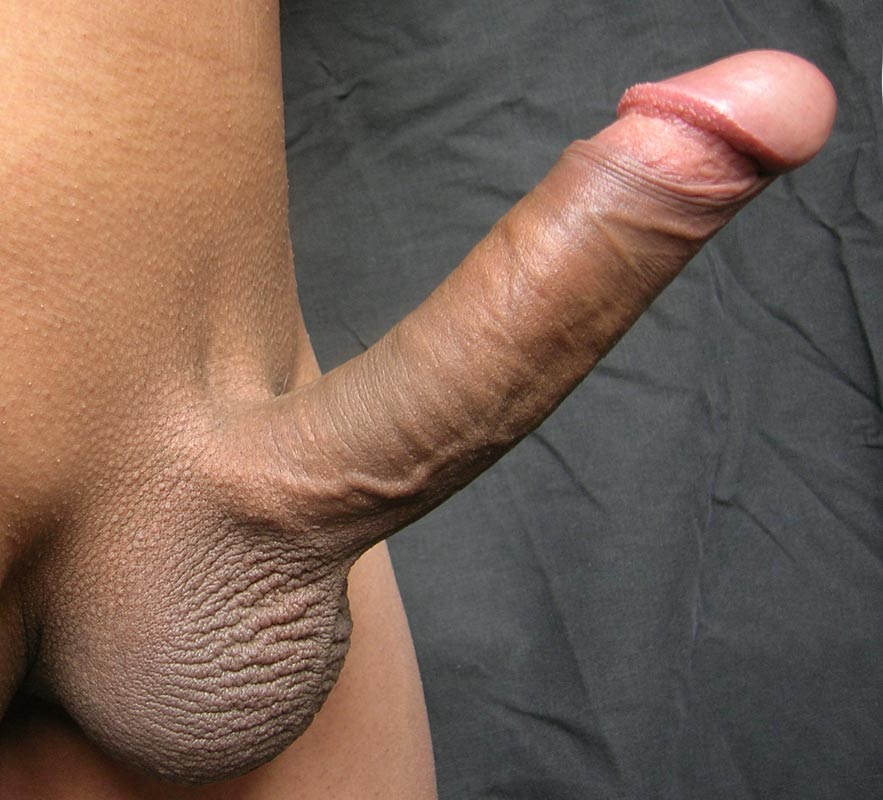 Huge Erected Penis 112