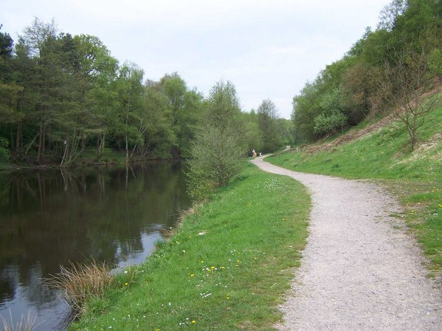 Footpath Through Cannock Chase Country Park - geograph.org.uk - 794820