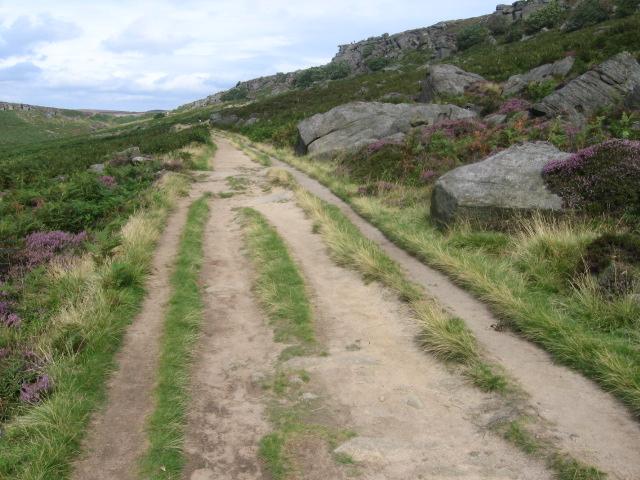Footpath below Burbage Rocks - geograph.org.uk - 1455629