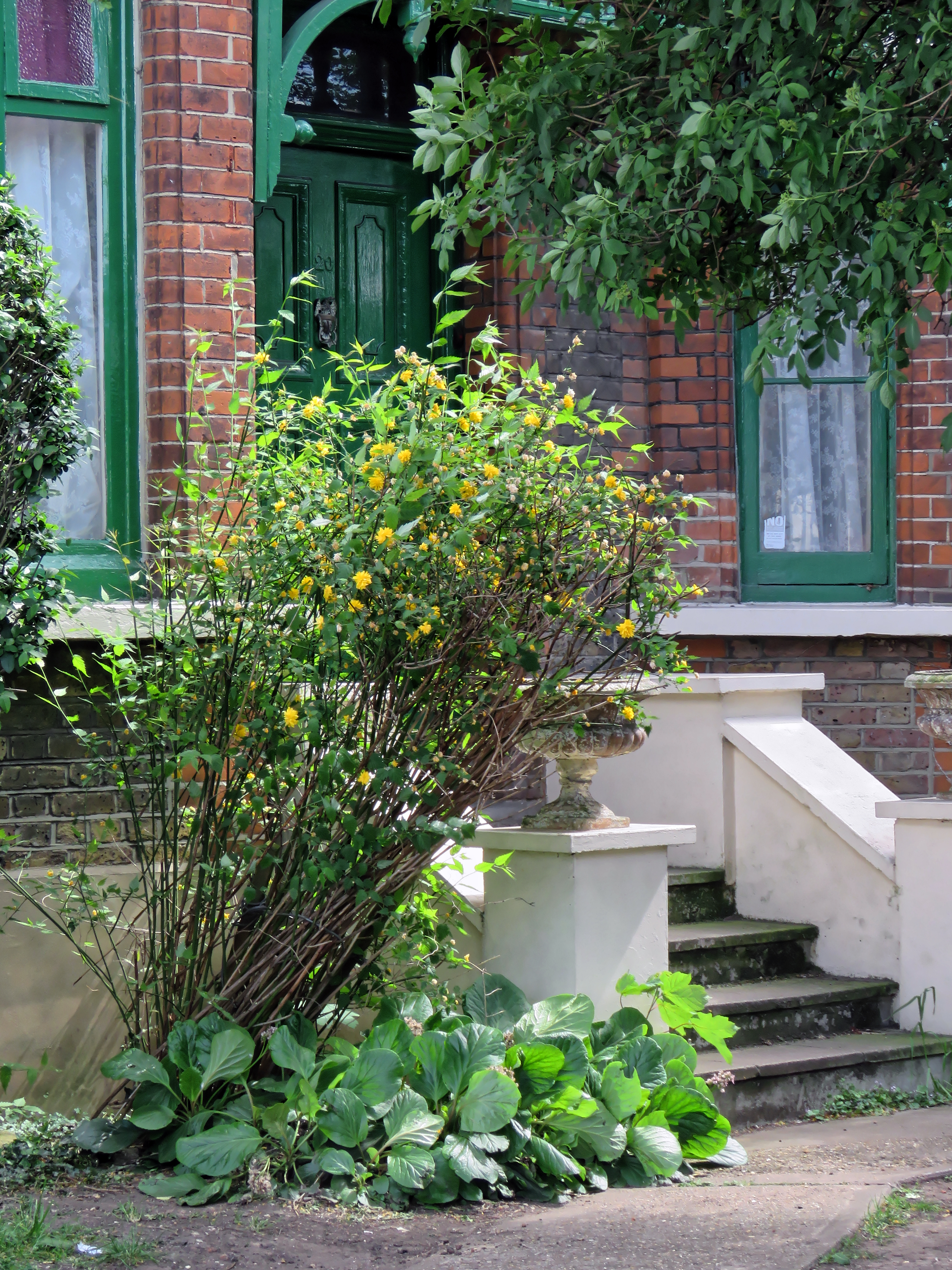 Remarkable Filefront Garden Steps Chingford Mount Road London Borough Of  With Licious Filefront Garden Steps Chingford Mount Road London Borough Of Waltham  Forest With Agreeable Garden Edge Trimmer Also Decorative Garden Wall Tiles In Addition Polwarth Gardens And Travelodge Covent Garden Reviews As Well As Almondsbury Garden Centre Additionally Natural Garden From Commonswikimediaorg With   Licious Filefront Garden Steps Chingford Mount Road London Borough Of  With Agreeable Filefront Garden Steps Chingford Mount Road London Borough Of Waltham  Forest And Remarkable Garden Edge Trimmer Also Decorative Garden Wall Tiles In Addition Polwarth Gardens From Commonswikimediaorg