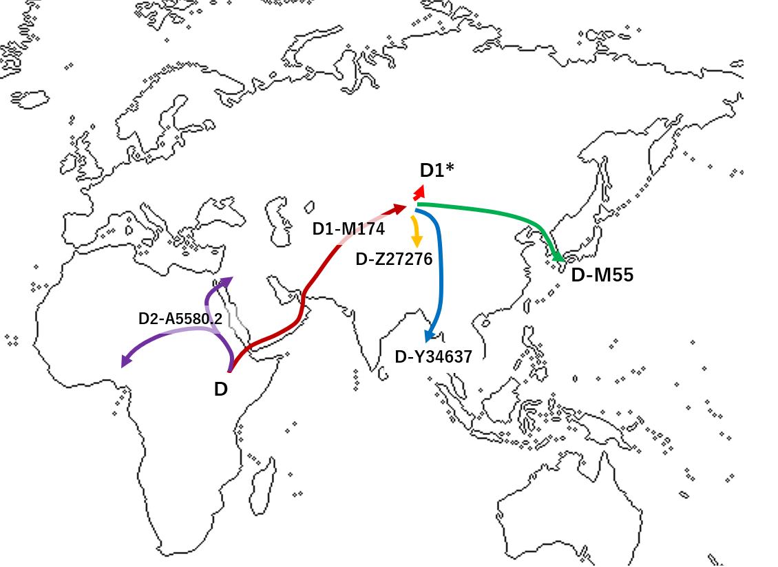 Haplogroup D-M174 - Wikipedia