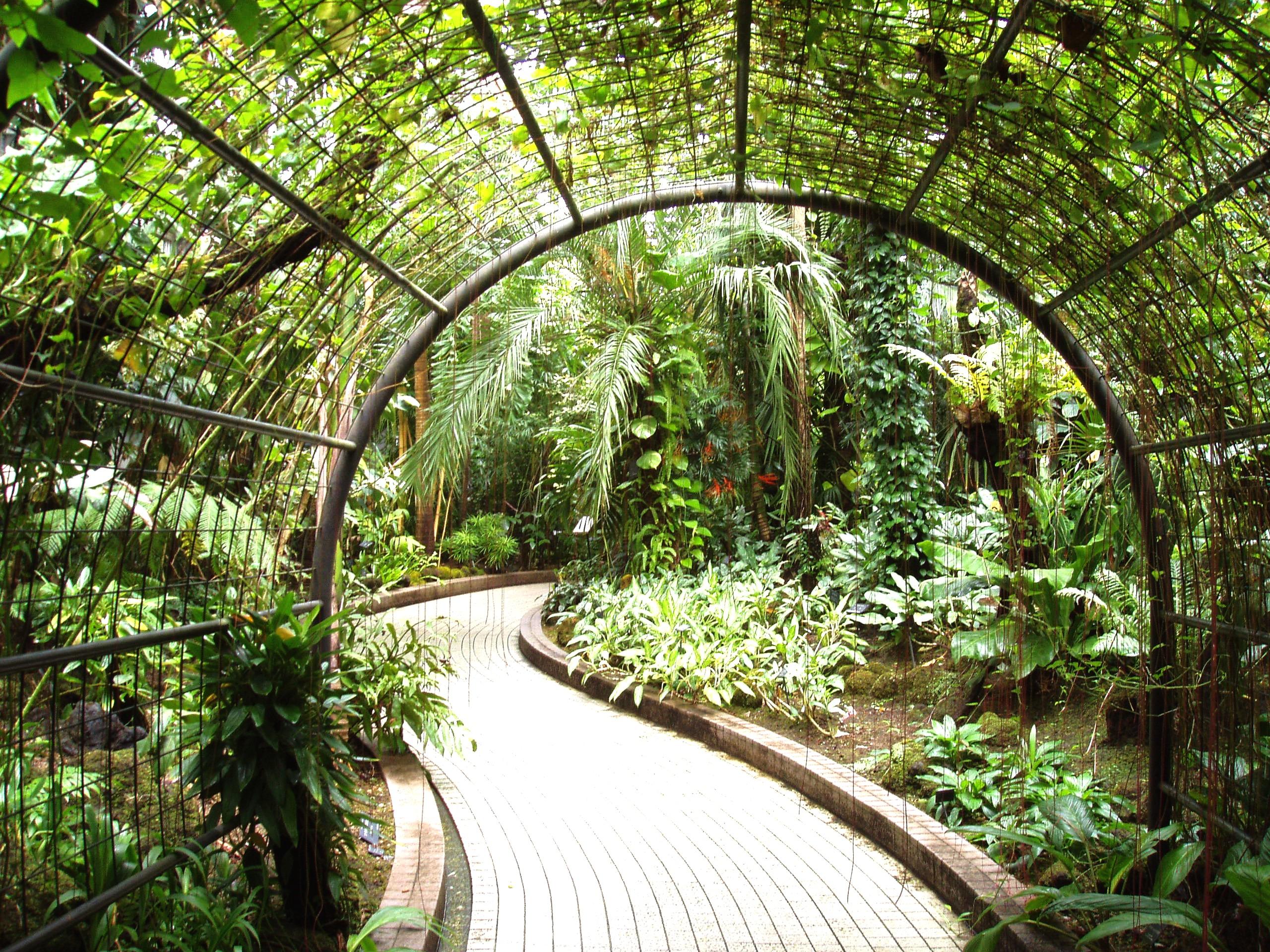 File kyoto botanical garden inside conservatory jpg for Botanical garden design