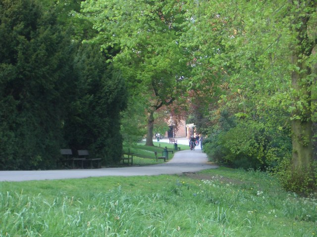 Path through Darley Park towards Tea Rooms - geograph.org.uk - 417091