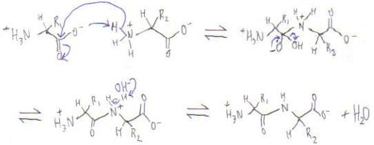 Structural Biochemistry/Organic Chemistry/Important Organic ...