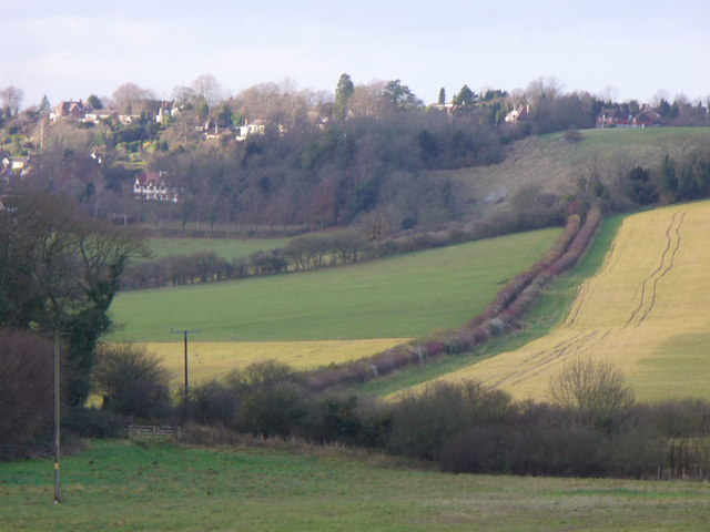 Pewley Down - geograph.org.uk - 625462