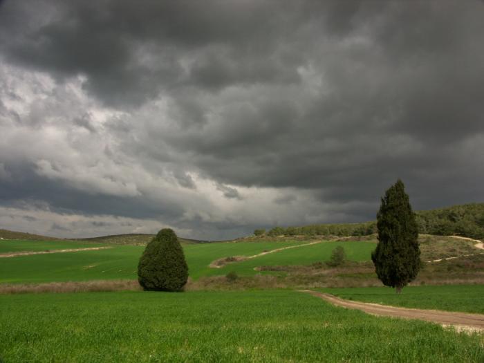עננים בחורשן