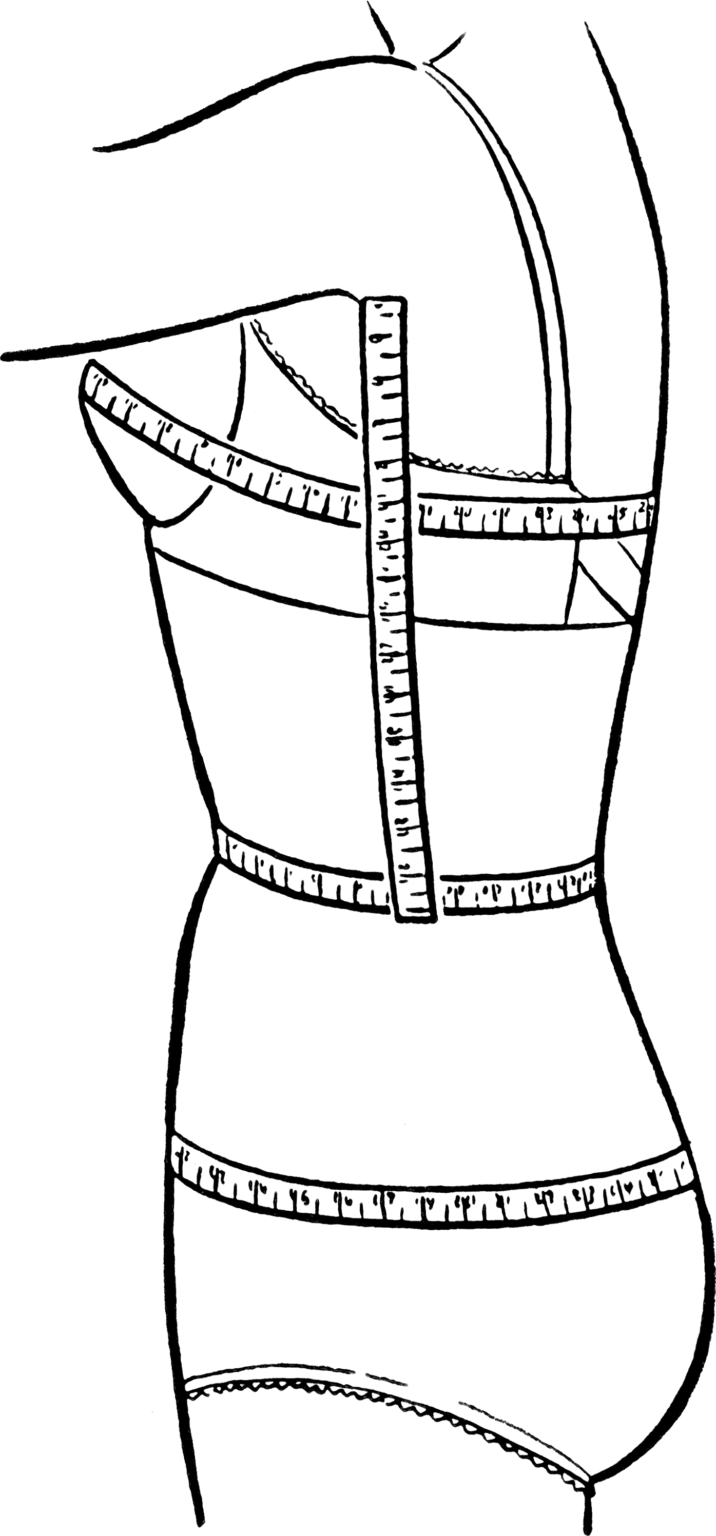895035e3e Bust waist hip measurements - Wikipedia