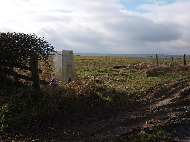 Potato Hill trig point - geograph.org.uk - 689596