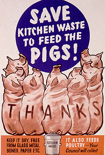 "Several pigs arranged in a semi-circle at the foreground, looking towards the centre and the words ""Save Kitchen Waste to feed the Pigs!"". ""Thanks"" is printed letter-by-letter along their backs. Instructions at bottom right ask for kitchen waste to be kept dry and free from glass, metal, bones, paper etc. Opposite, it says ""it also feeds poultry"" and that ""Your Council will collect"""