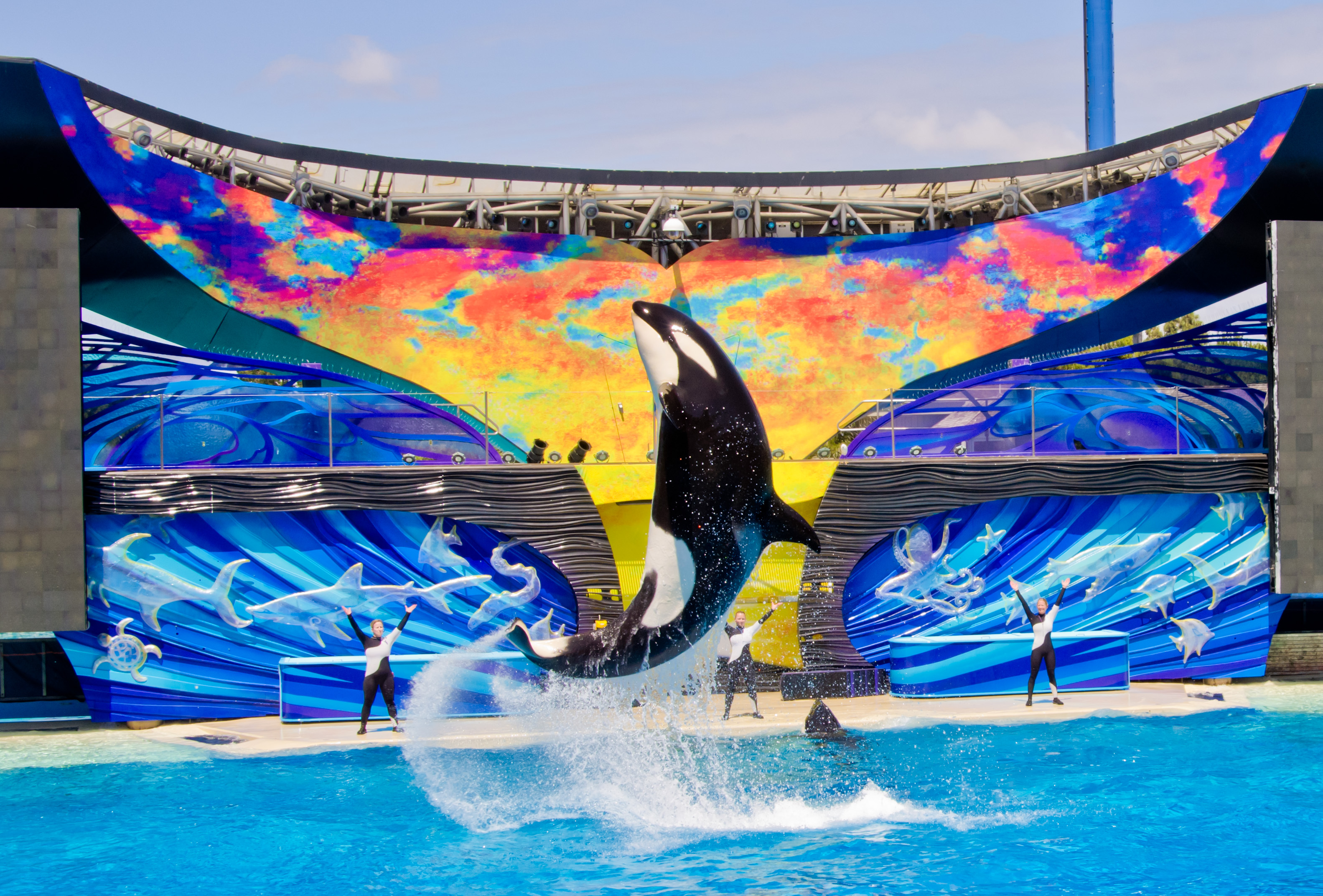 Seaworld San Diego Hotels
