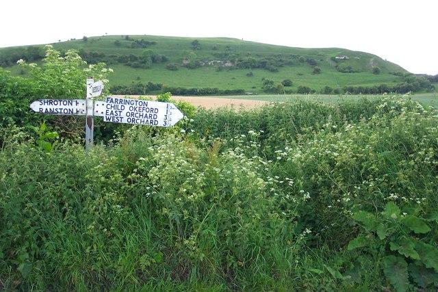 Signpost near Hambledon Hill - geograph.org.uk - 645001