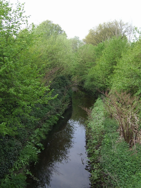 Smestow Brook in the Valley Park - geograph.org.uk - 408732