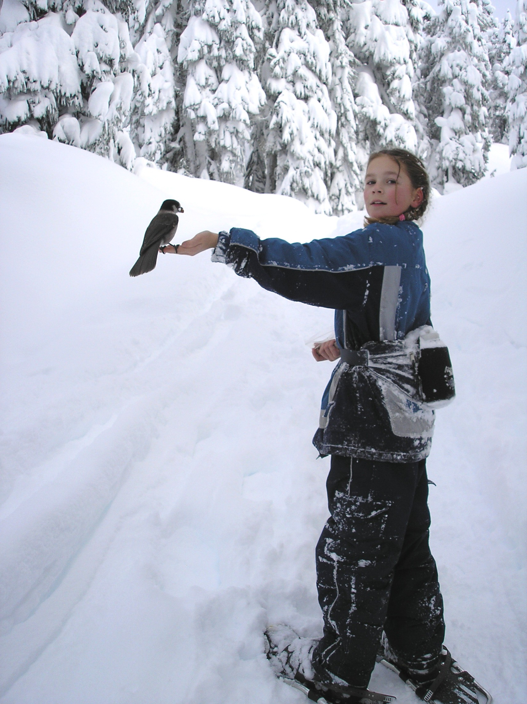 aad93b810a File:Snowshoer with perching bird.jpg - Wikimedia Commons