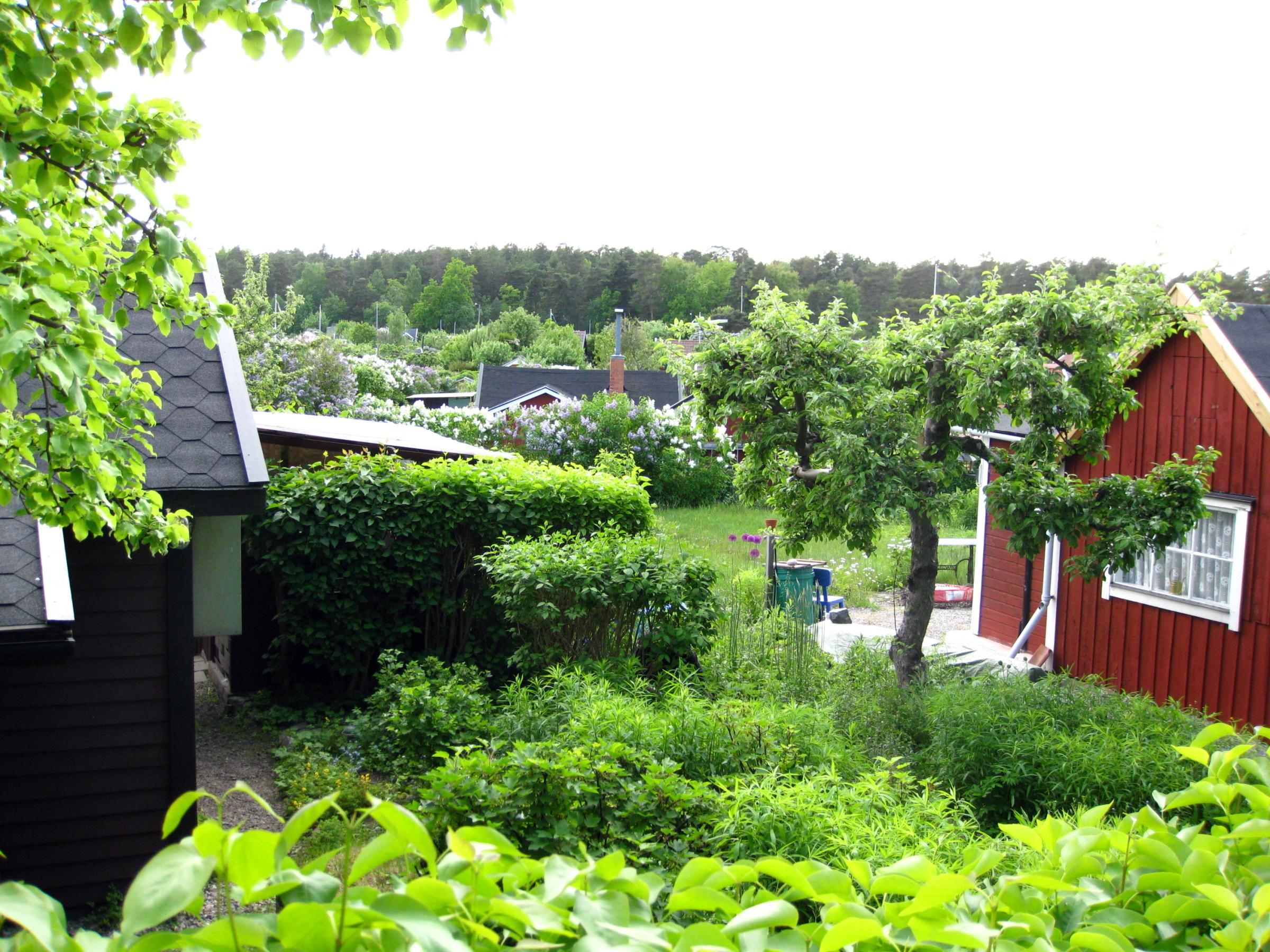 Fil:Stora Mossens koloniområde01.jpg – Wikipedia