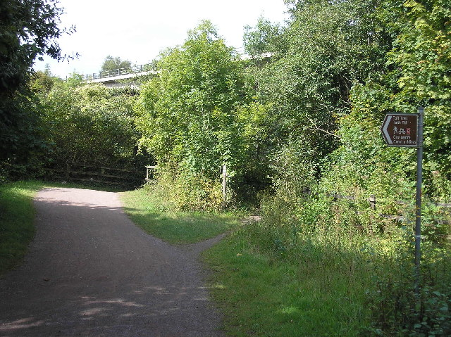Taff trail - geograph.org.uk - 49360