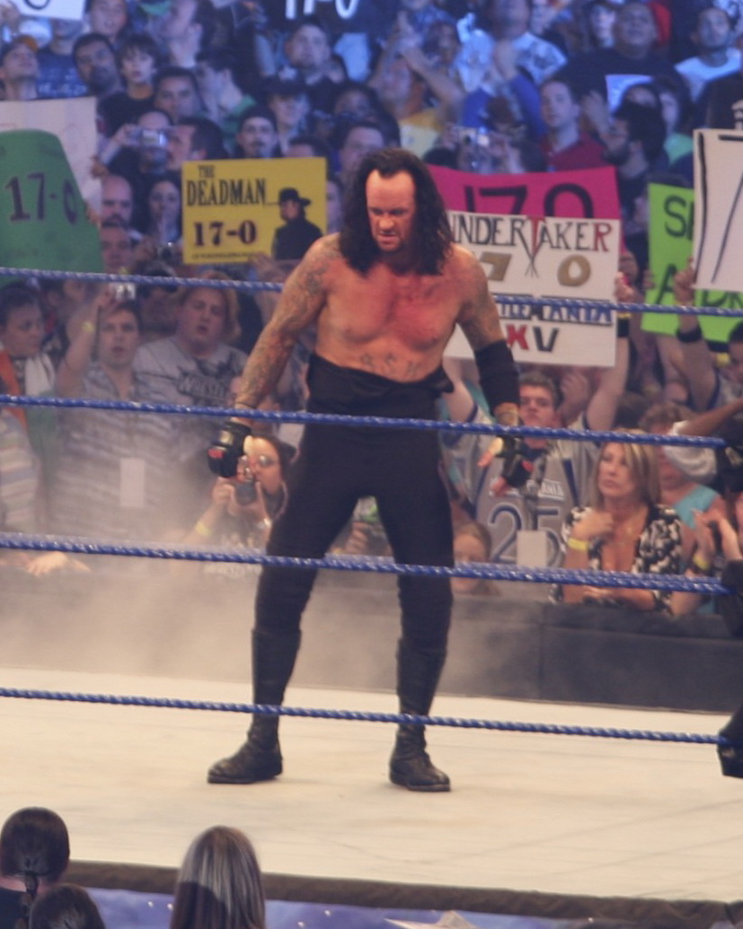 Wwe The Undertaker 1990s The undertaker after