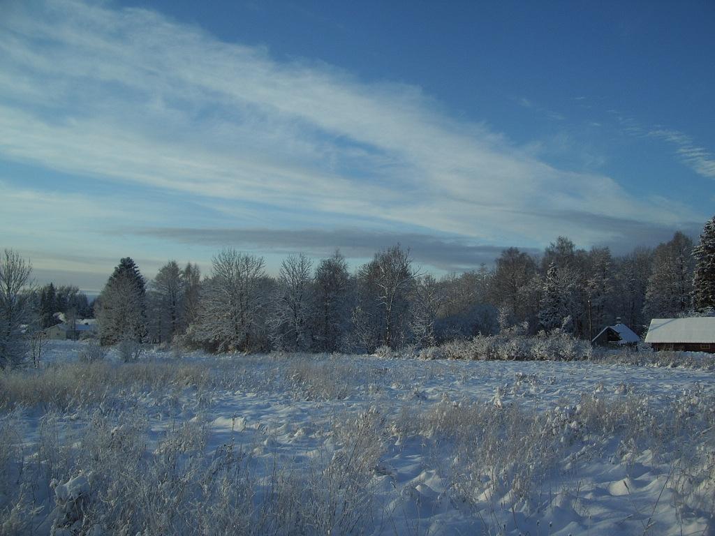 File:Winter Wonderland Tõnija.JPG - Wikimedia Commons