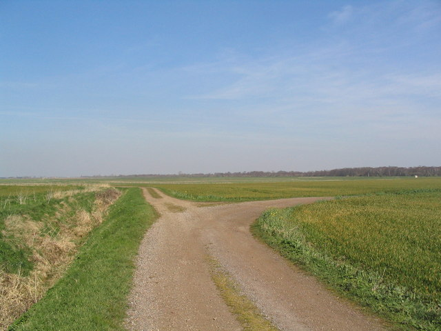 Woodwalton Fen - geograph.org.uk - 389704
