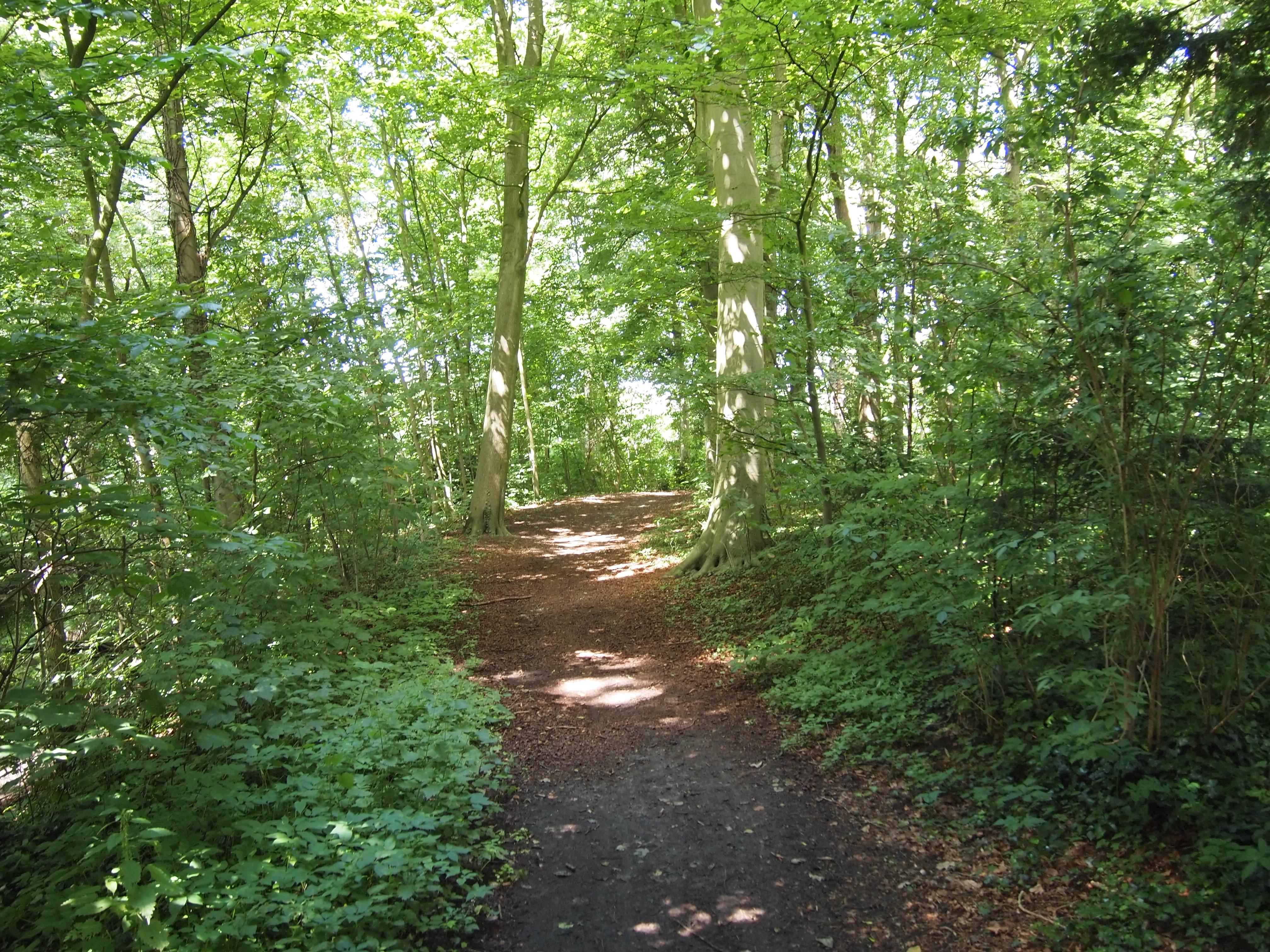 Engelse Landschapsstijl Tuin : Park in engelse landschapsstijl in aardenburg monument