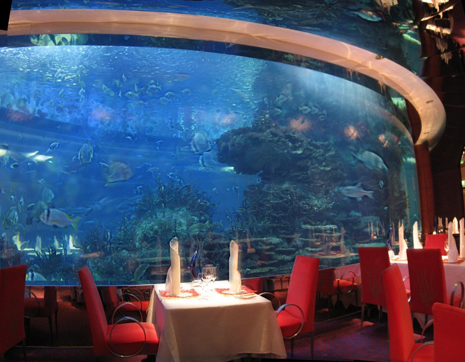 Where to travel burj al arab in dubai for Fish hotel tank