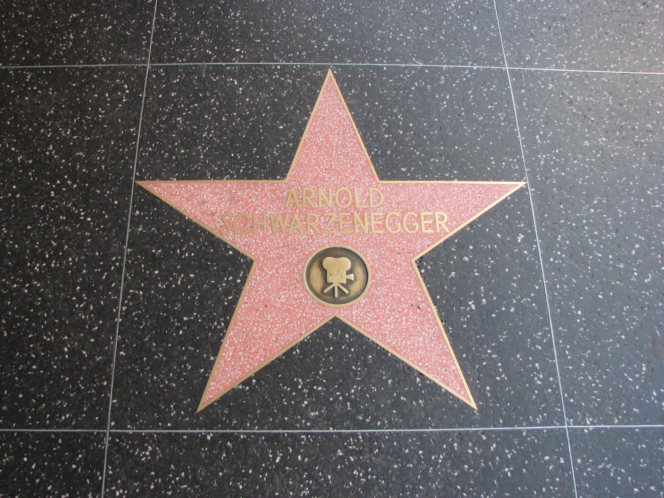 stern von schwarzenegger auf dem hollywood walk of fame - Arnold Schwarzenegger Lebenslauf
