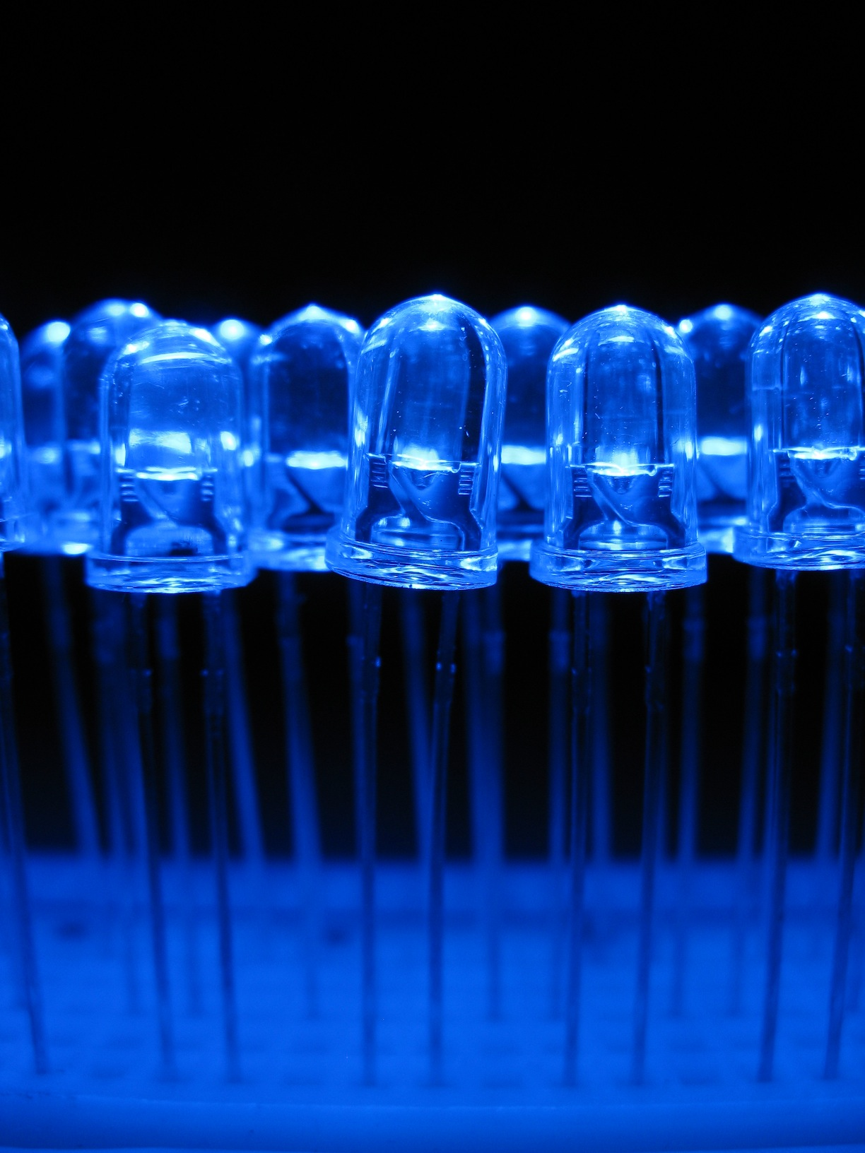 Blue light emitting diodes over a proto-board.jpg