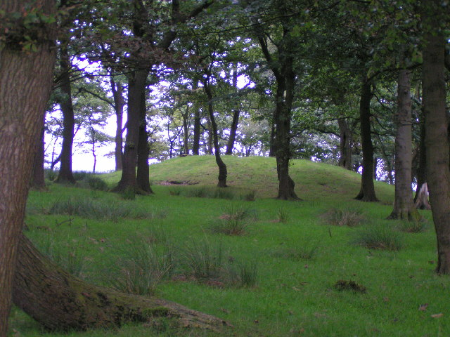 File:Brown Low, Ludworth Intakes - geograph.org.uk - 44761.jpg