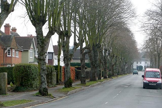 File:Buckingham Road - geograph.org.uk - 1180229.jpg