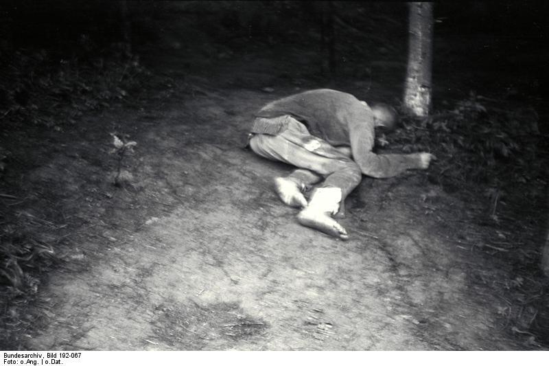 Bundesarchiv Bild 192-067, KZ Mauthausen, Erschossener Häftling