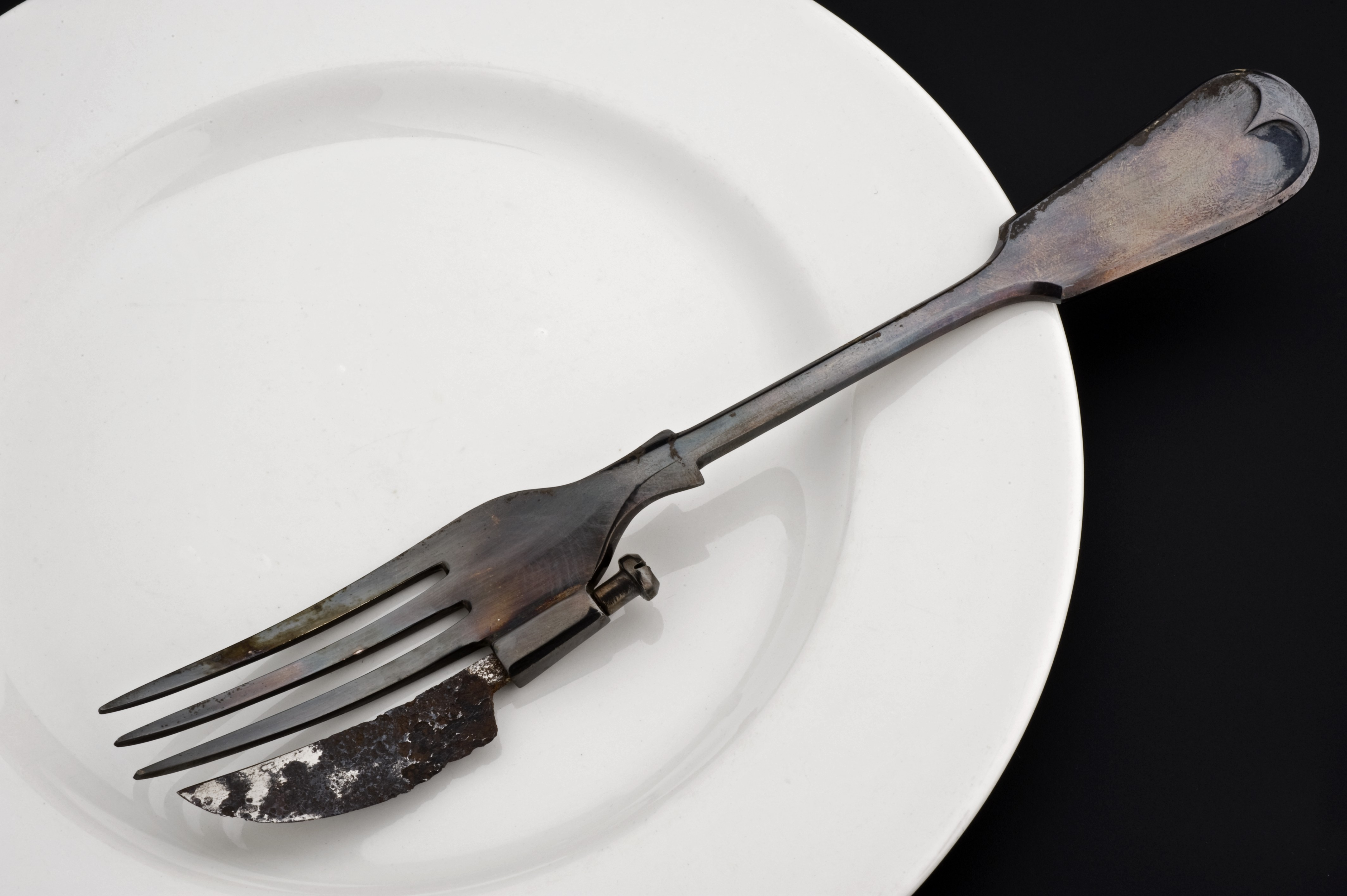 Image Result For What Can Eating