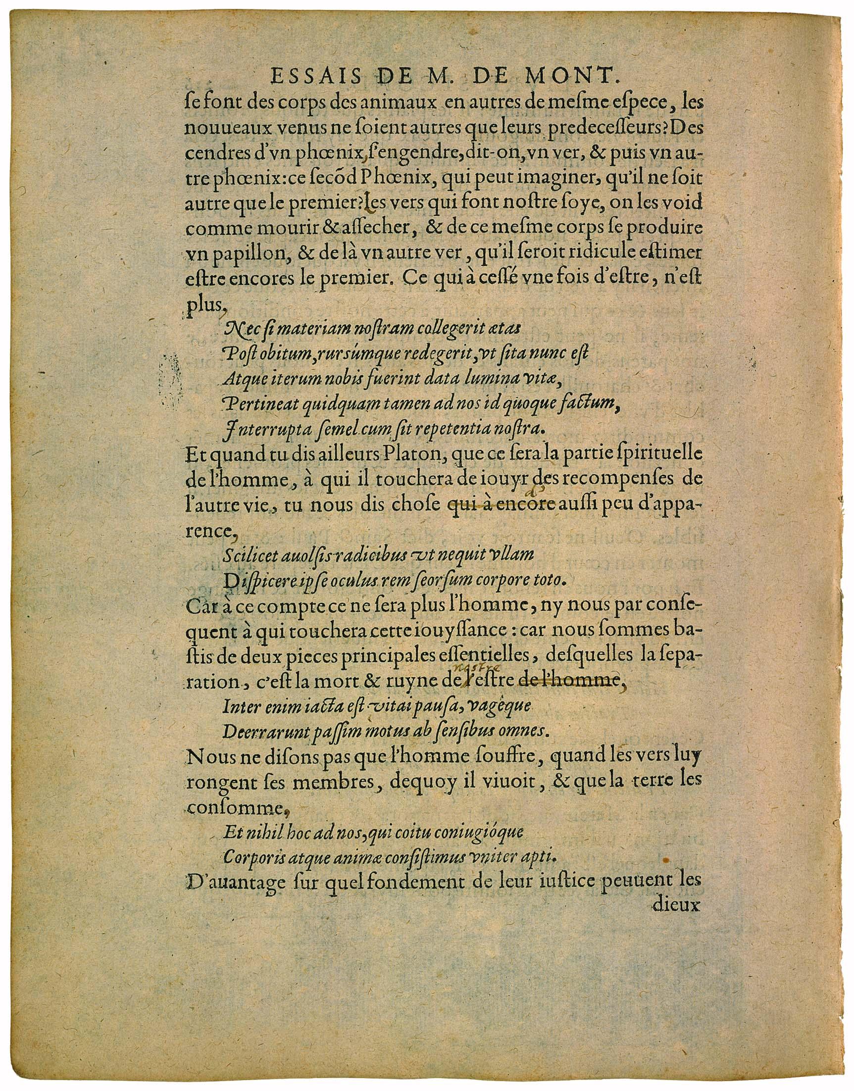fileessaislivre 20224vjpg wikimedia commons