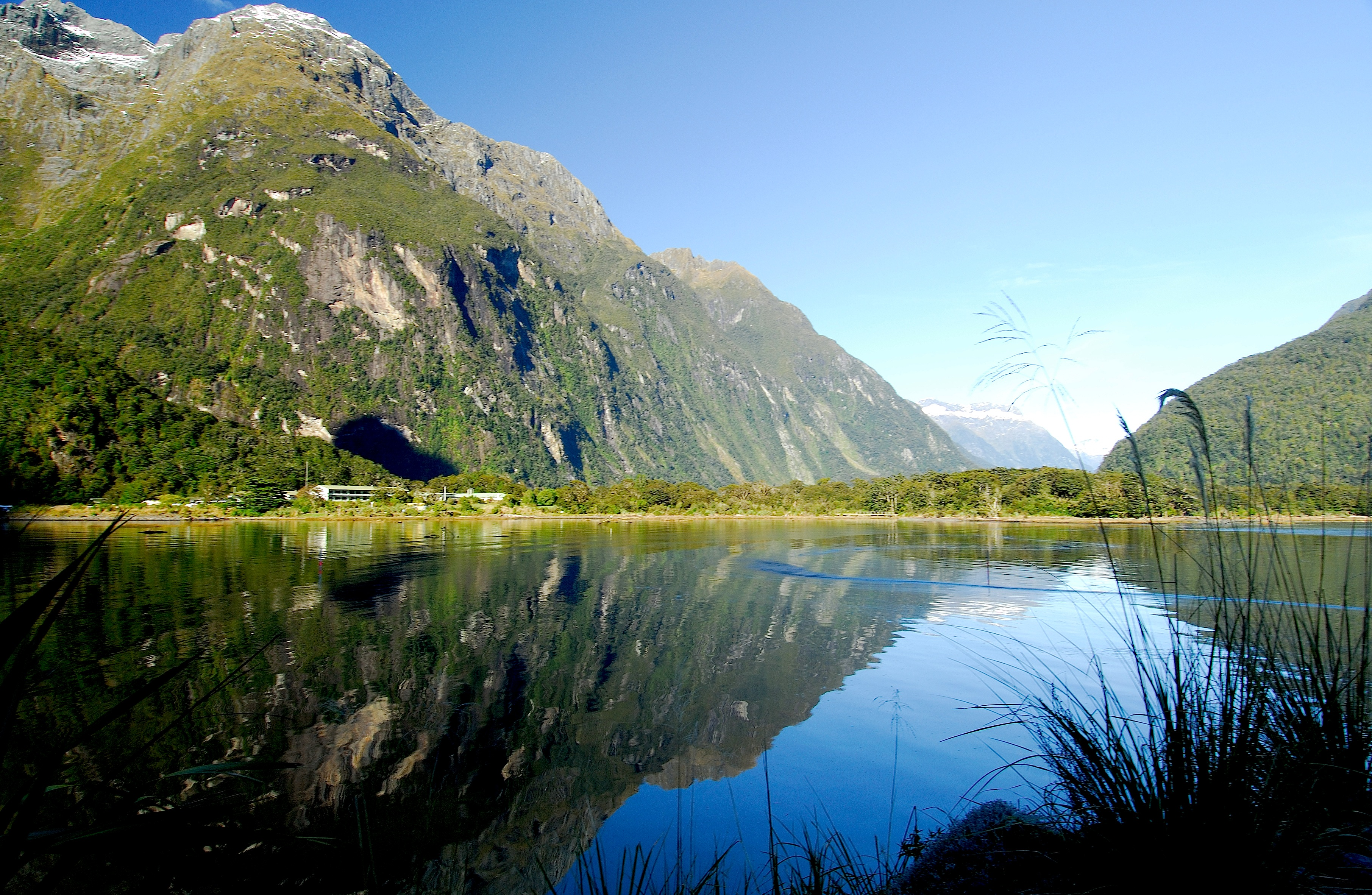 7 best things to do in milford sound new zealand trip101 for The milford