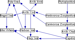 A food web, a generalization of the food chain, depicting the complex interrelationships among organisms in an ecosystem.