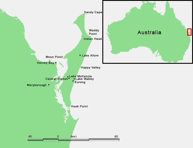 Fraser Island Hervey Bay Tours