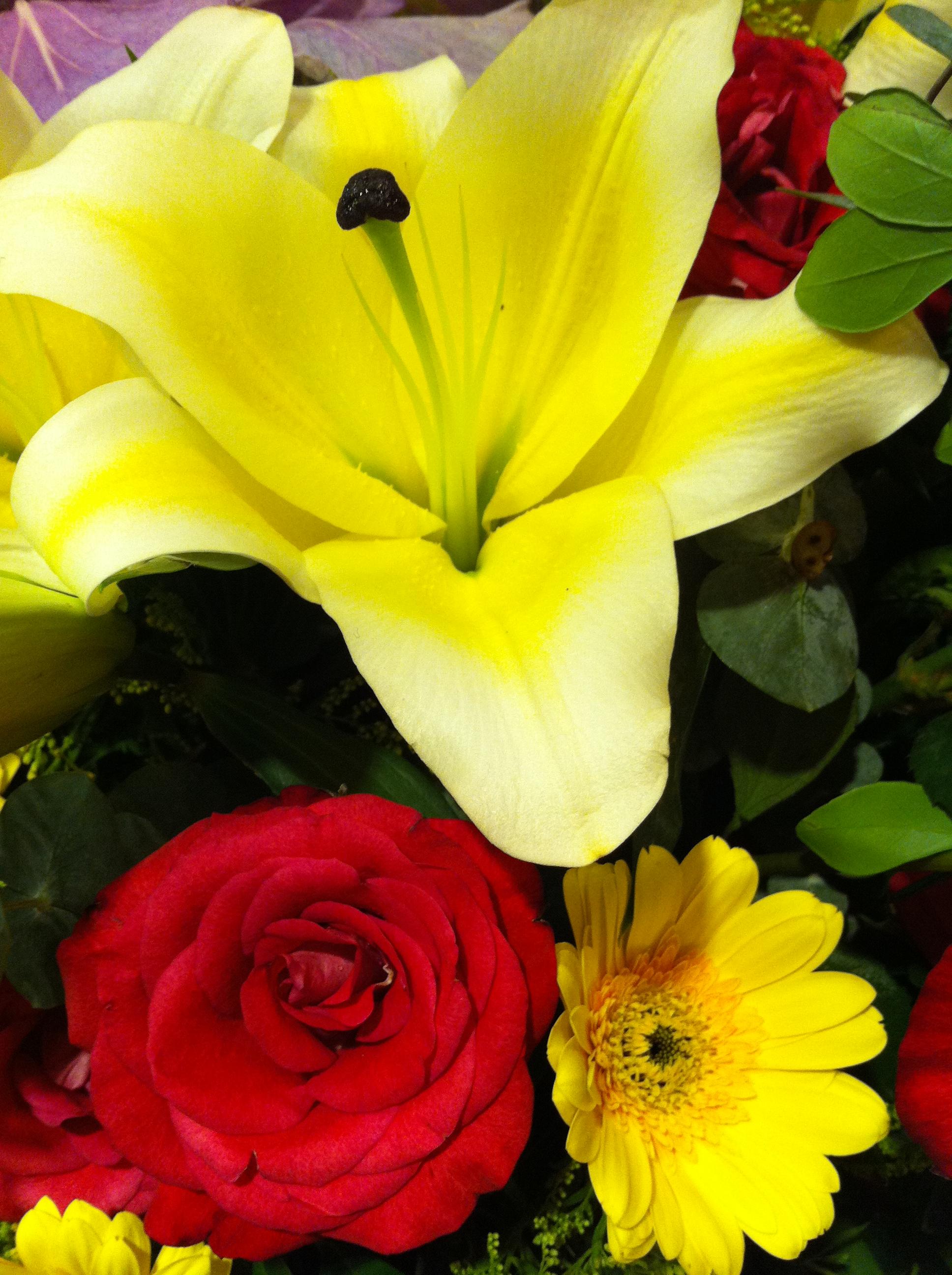 Description HK Sai Wan Ho flower July-2013 red Rose yellow Lily Daisy ...