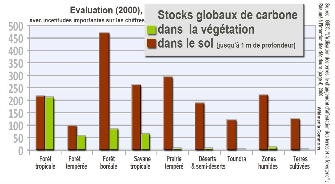 IPCCStockCarboneSolsV%C3%A9g%C3%A9tation