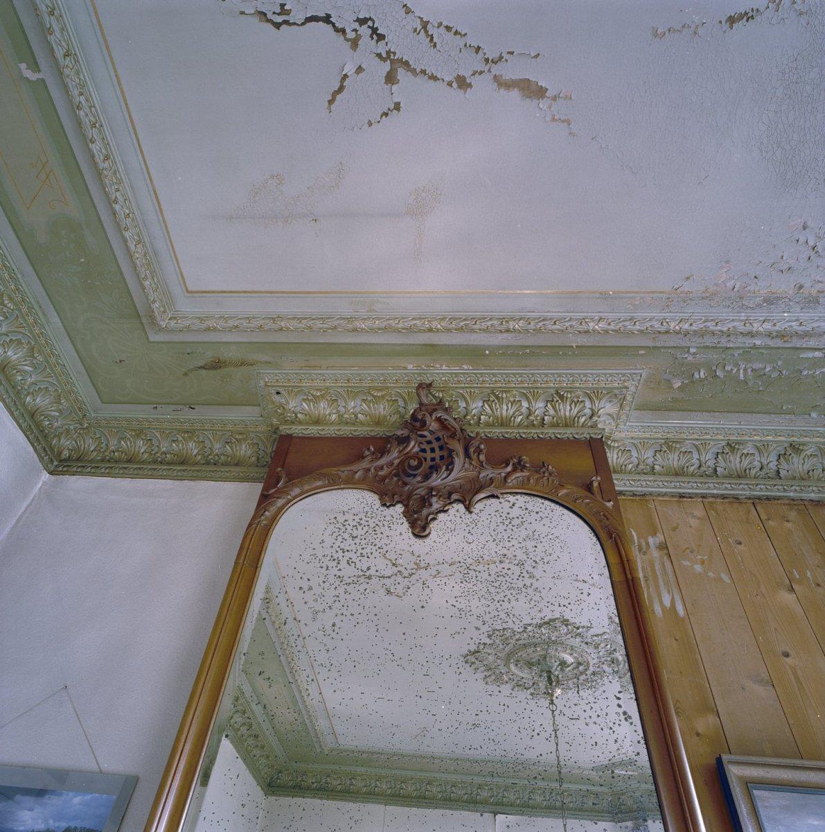 File interieur voorkamer gedeelte stucplafond en for Interieur decoratie