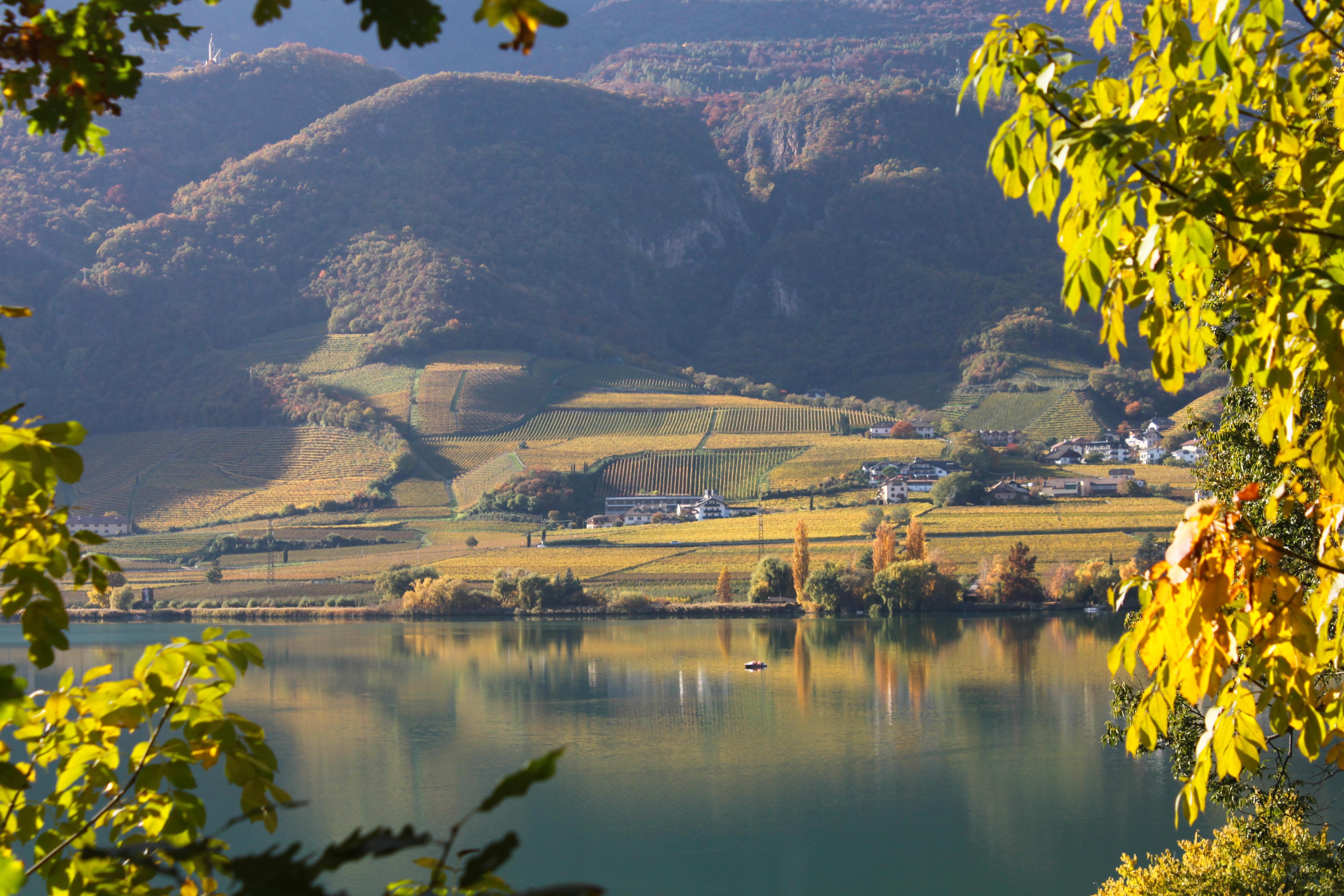 Kalterer See Blick auf Westufer.JPG
