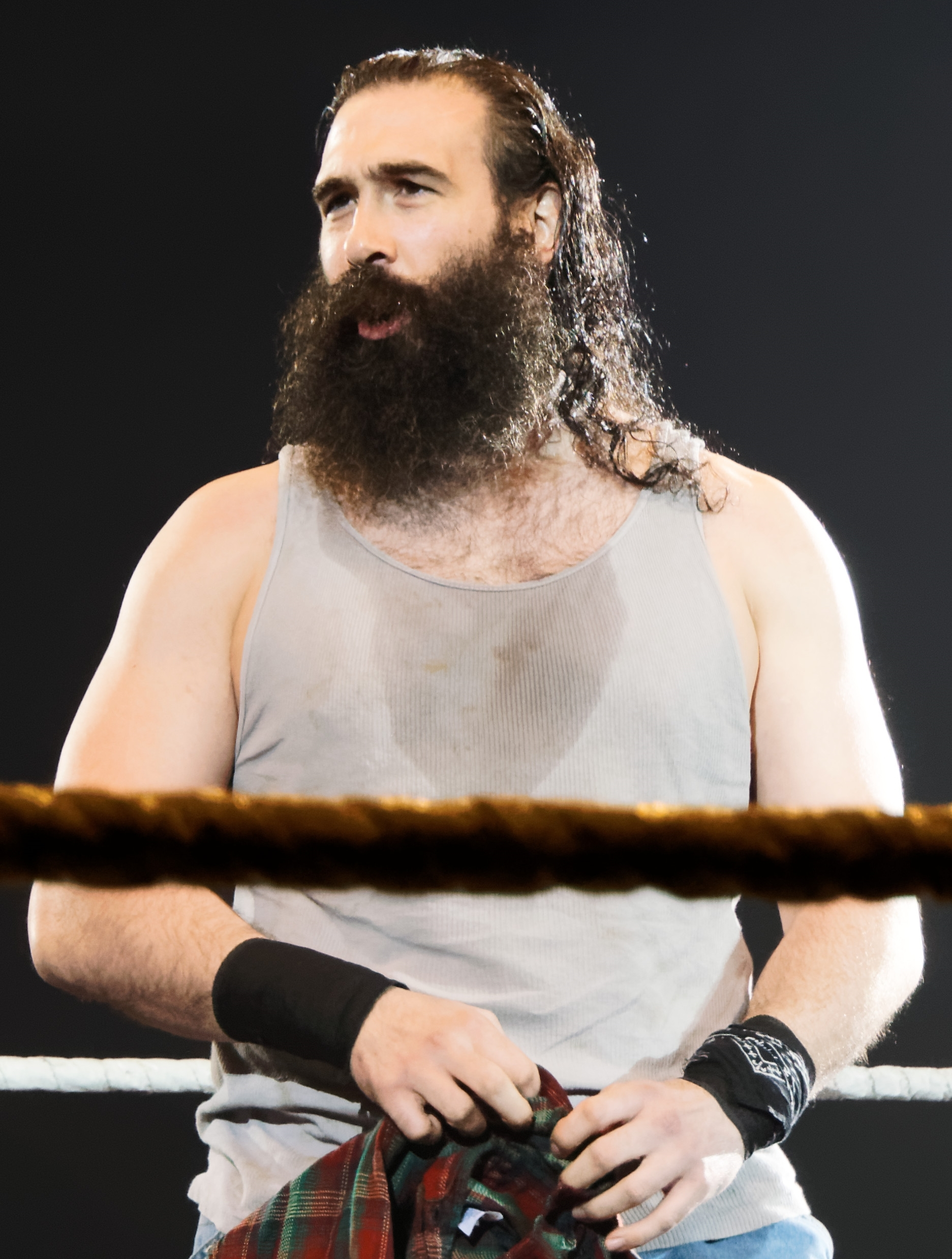The 38-year old son of father (?) and mother(?) Luke Harper in 2018 photo. Luke Harper earned a  million dollar salary - leaving the net worth at 0.3 million in 2018