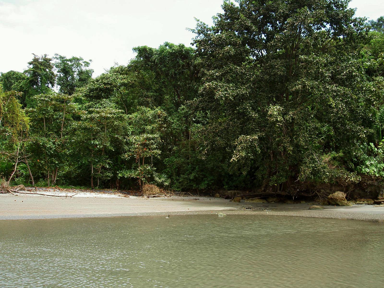 Resultado de imagen para Río Mataje
