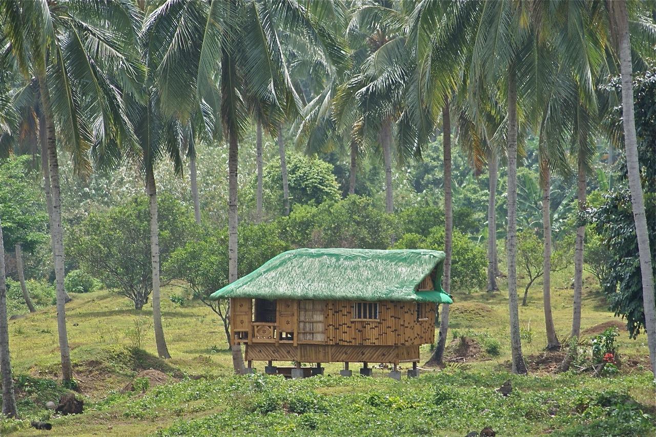 File Nipa Hut Taken At Magdalena Laguna Philippines On