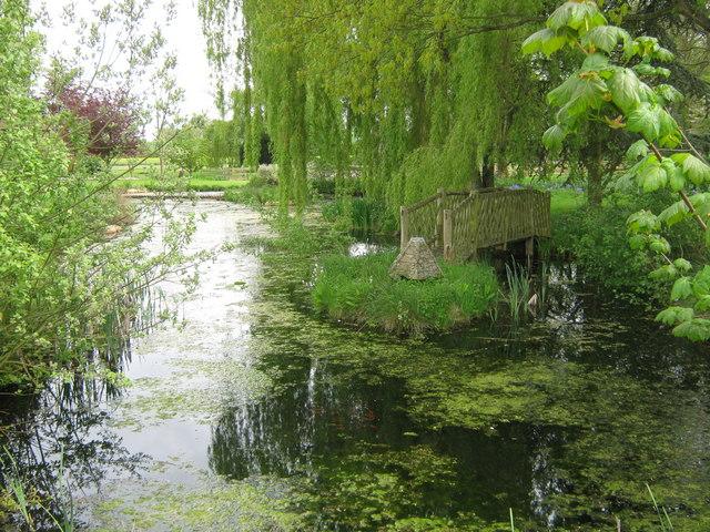 Ornamental Pond and duck bridge - geograph.org.uk - 1292620