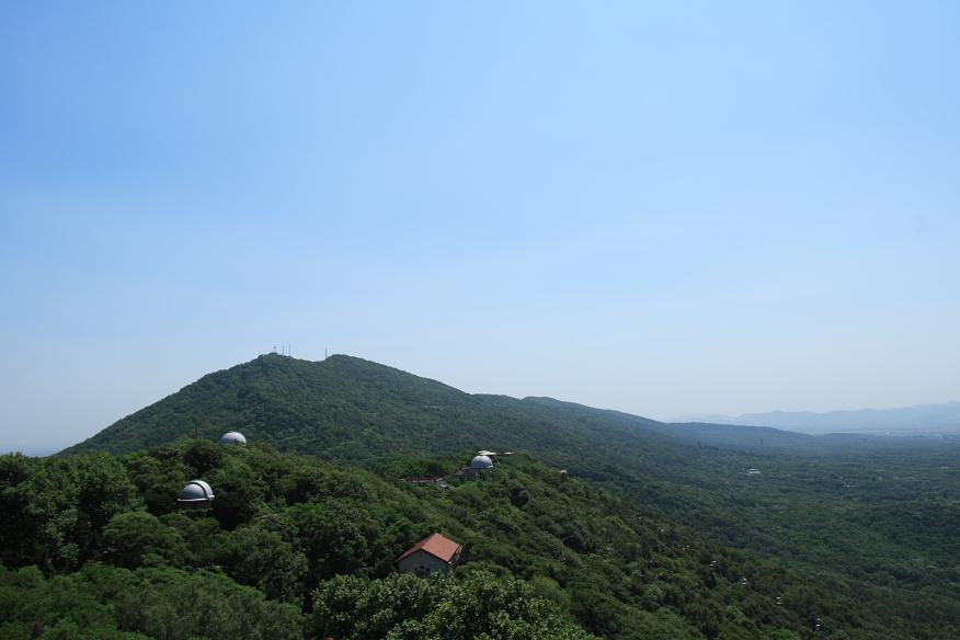 purple mountain wikipedia