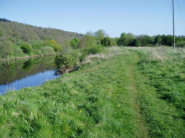 River path - geograph.org.uk - 1400707