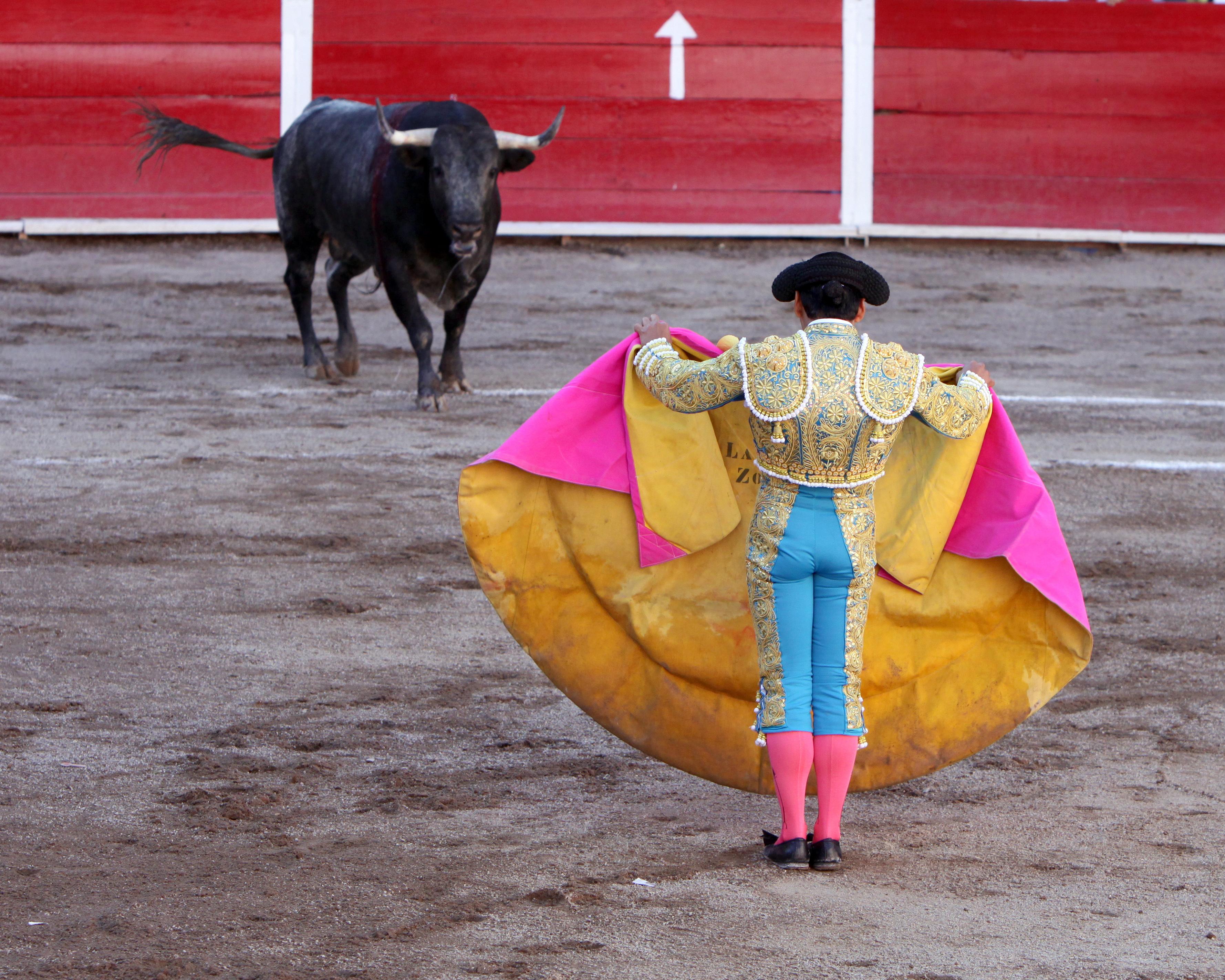 Korida - Borba bikova San_marcos_bullfight_01