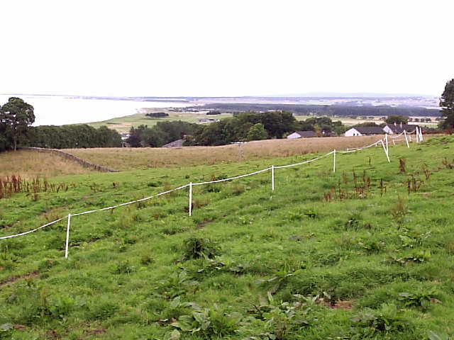 culloden dating site Scottish fact of the week: battle of culloden  a memorial cairn erected in 1881 occupies the site,  dating local guide public notices.